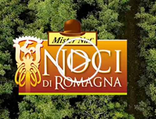 Noci di Romagna